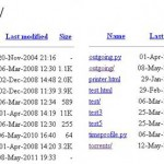 TMG hacked server directory