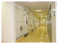 Japanese Prison