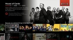 New Netflix UI