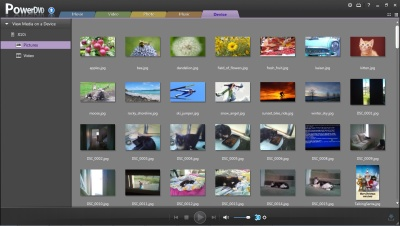 PowerDVD 11: Device Pictures