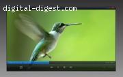 Video Playback Info Panel