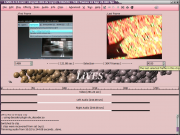 Clip Editor