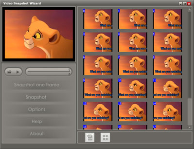 main interface overview capture frame image